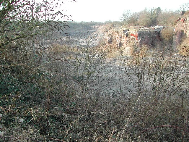 Disused Limestone Quarry