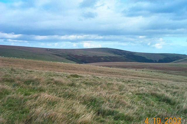 Stall Moor - Dartmoor