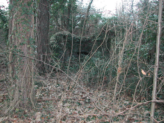 Old (now derelict) Lime Kiln
