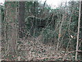 ST5571 : Old (now derelict) Lime Kiln by FollowMeChaps