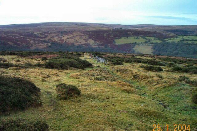 Yar Tor Down - Dartmoor