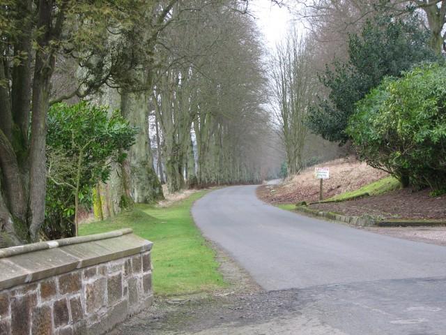 Netherurd driveway