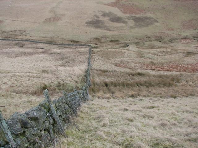 Descending to the Fingland Burn