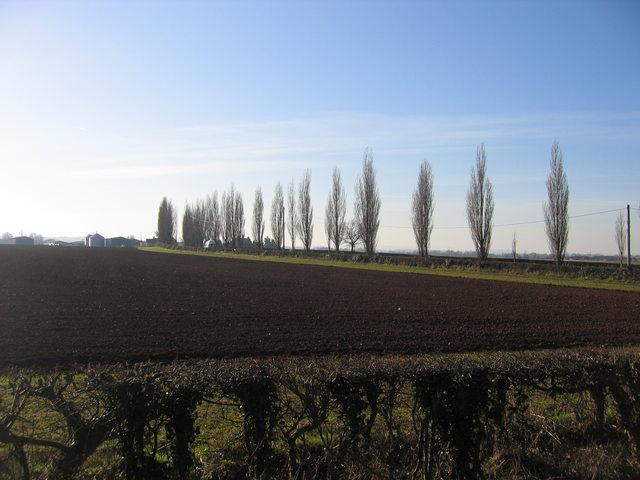Upper Hunscote Farm