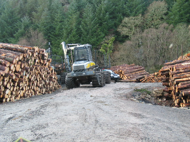 Forestry operations near to Tarbert, Argyll.