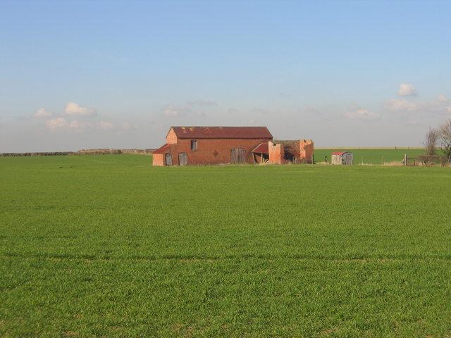 Dosey Barn