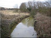 SZ5585 : River Yar by Nigel Cox