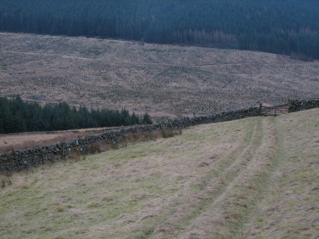 Path from Fingland