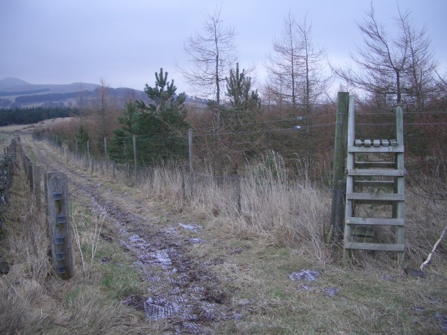 Track and stile