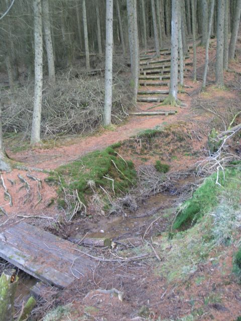 Forestry Footpath in Bryn Llefrith Forest