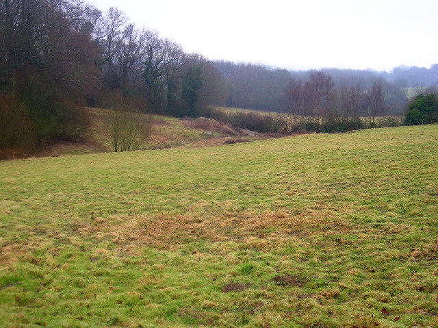 Wealden landscape near Ginger's Green