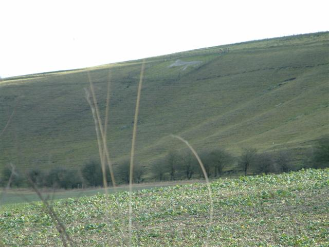 Fields in the shadow of the White Horse