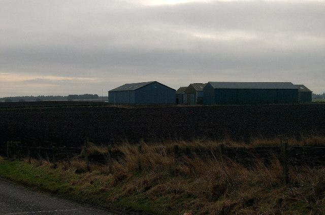 Modern Farm buildings at Curleys.