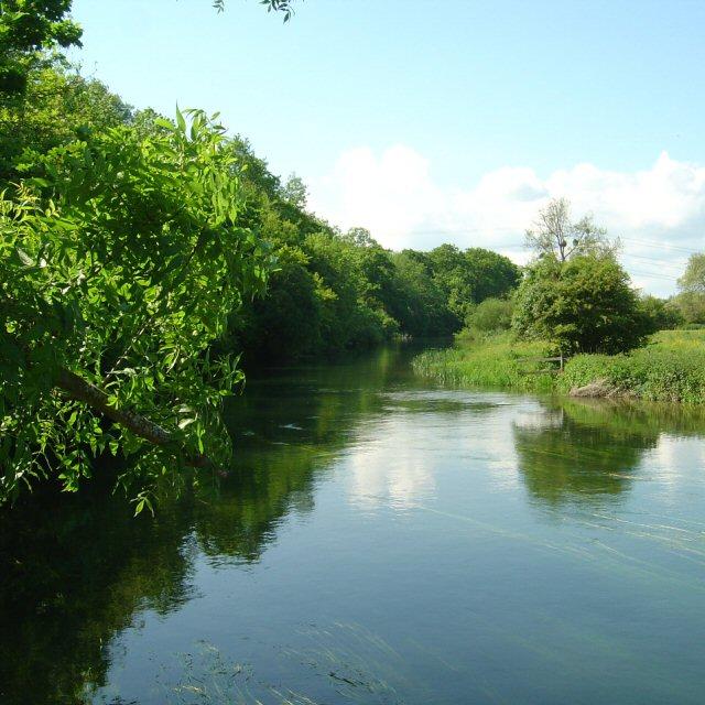 River Avon near Hale House