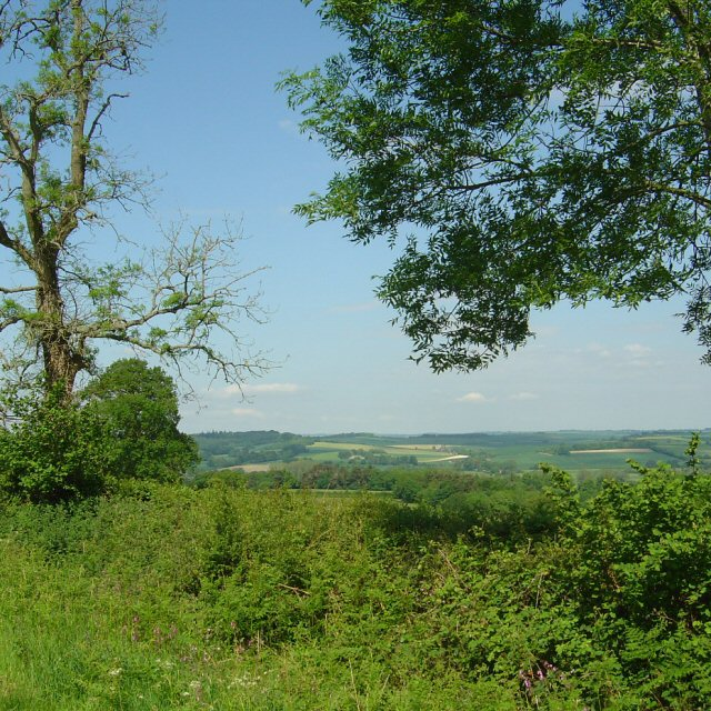 View of Avon Valley