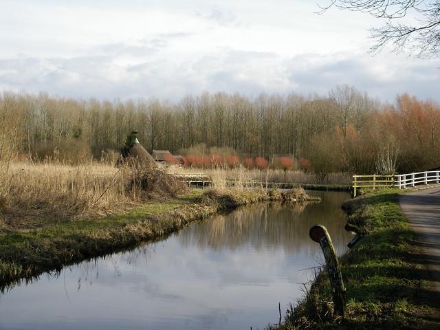 River Test at Longstock
