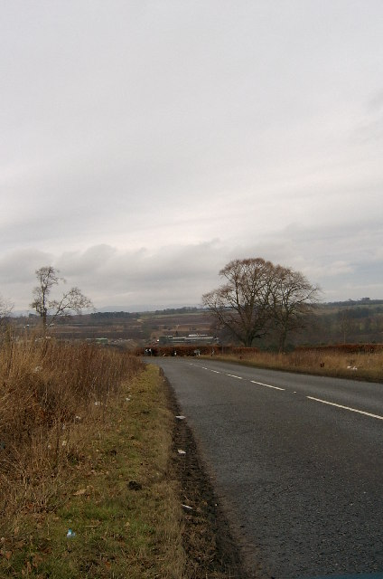 Litter on the roadside, looking towards the outskirts of Brechin.