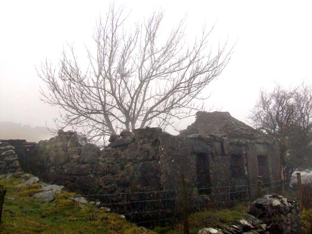 Derelict cottage in low cloud