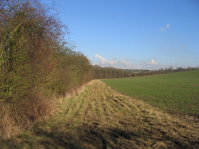 Footpath to Coombe Farm