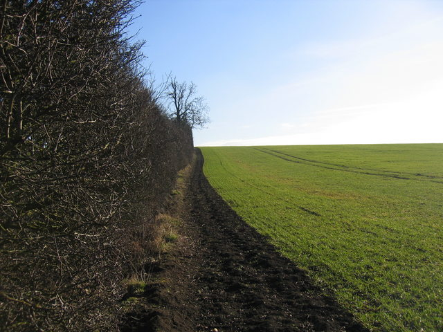 View from footpath to Coombe Farm