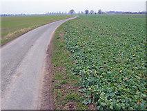 SE7725 : Farmland at SE774253 by Stephen Horncastle