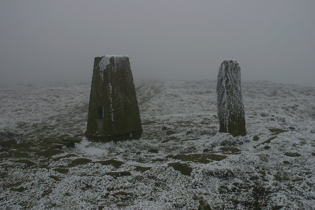 Whorlton Moor trig