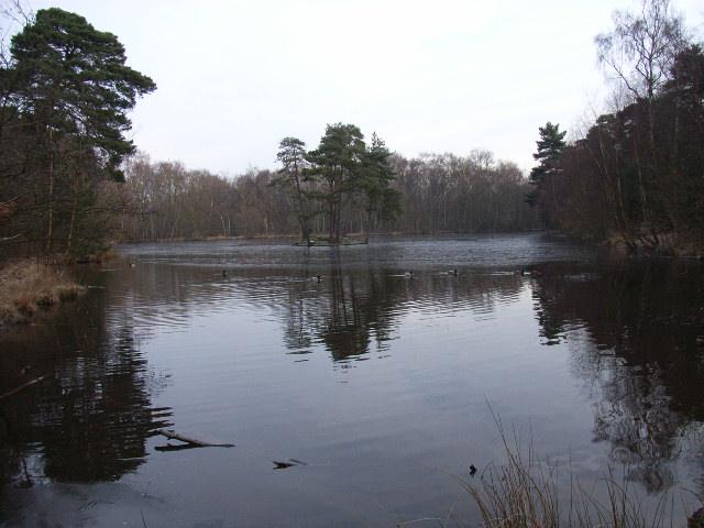 Heath Pool