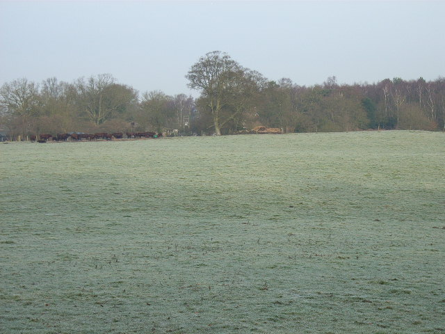 Farmland near Ridges Farm