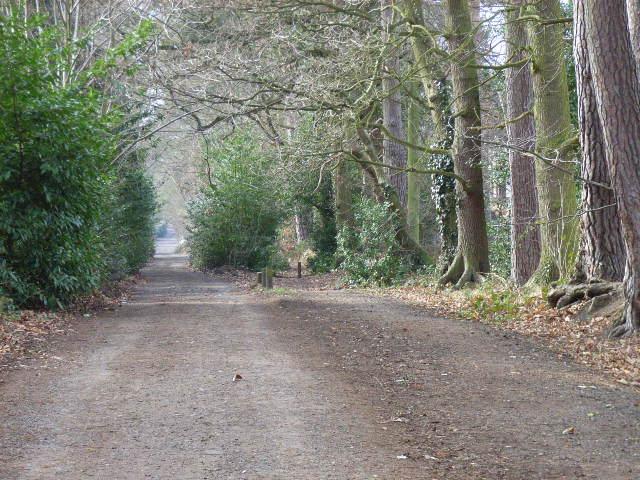 Oaklands Lane, Wokingham Without
