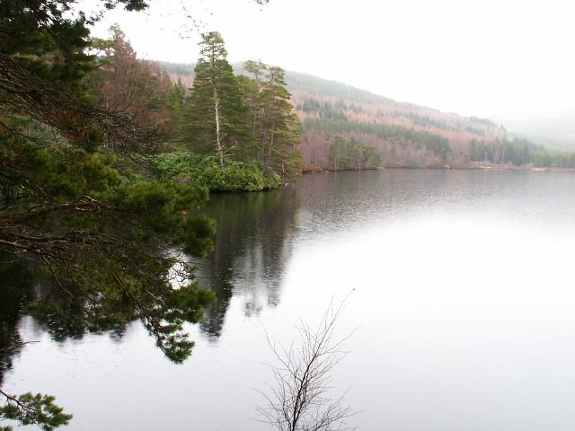 North shore of Loch Farr