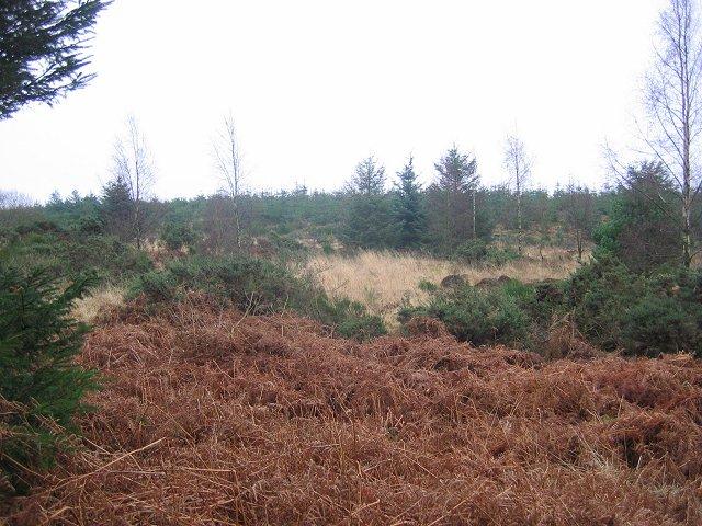 Weddersbie Hill