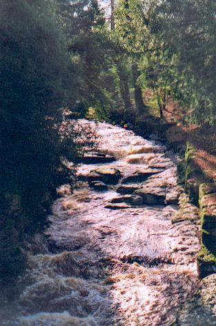 River Greta, Rokeby
