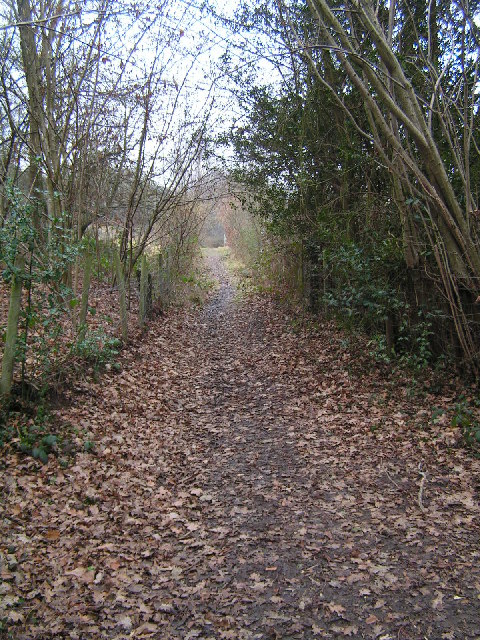Footpath leading to Rusthall