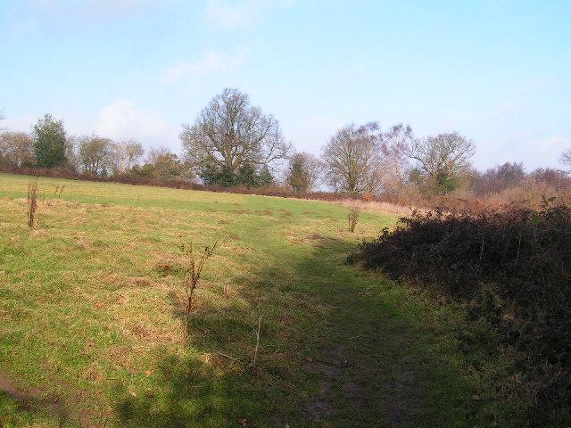 Field & footpath