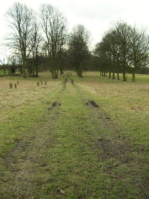 Ledston Hall park grounds