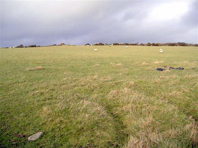 Field near Upper Ballavarkish