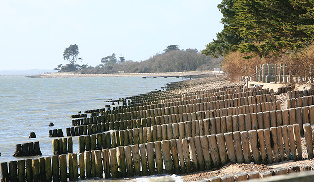 Private beach & groynes south of Little Marsh