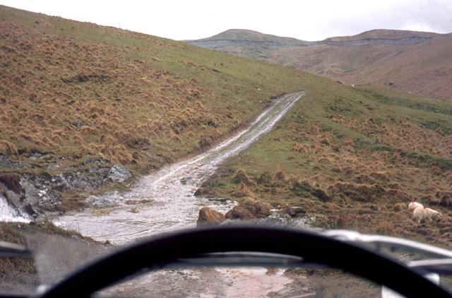 Country road north of Llandovery