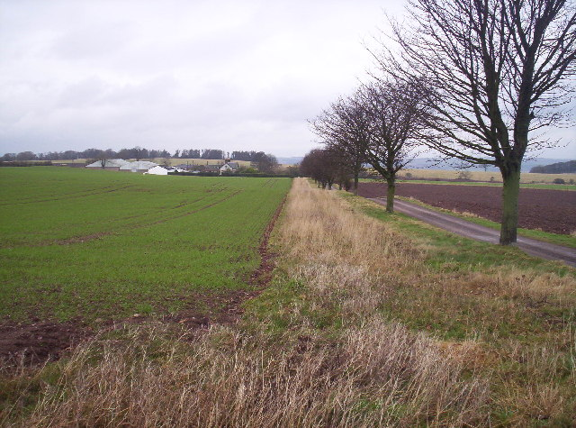 West Mains of Rossie