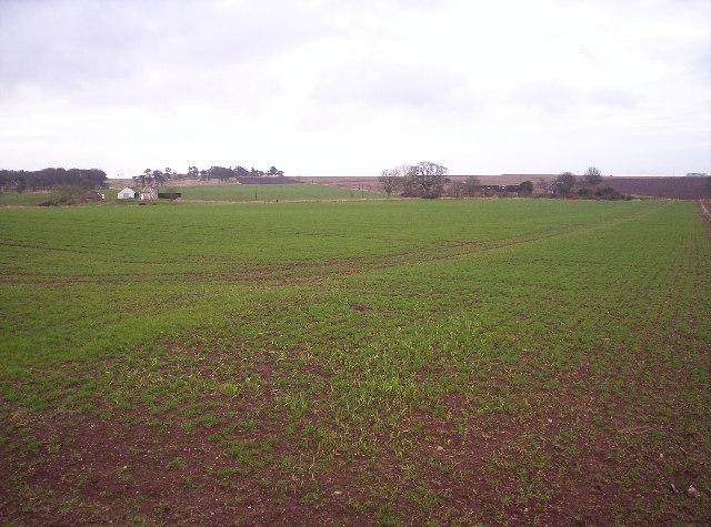 Gightyburn Farm and Fields