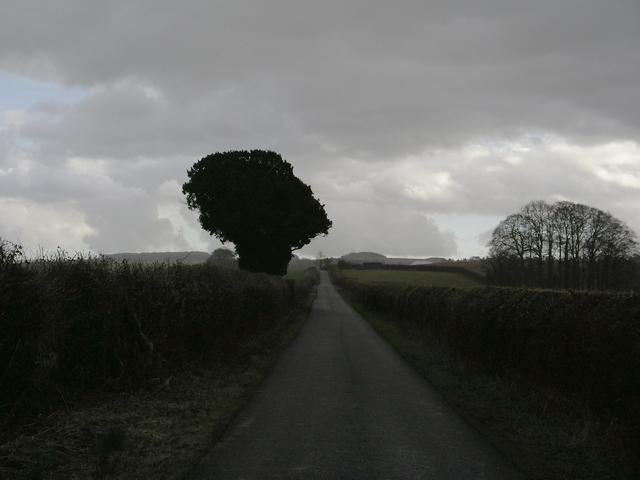 Long Walk, south of Easton