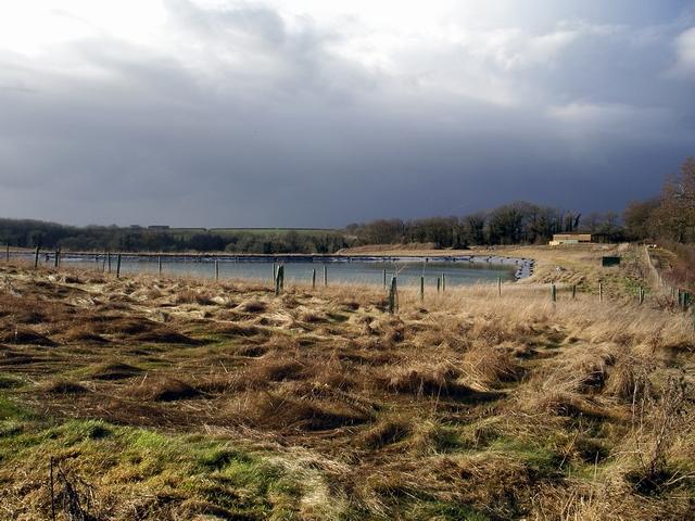 Farm pond at Fobdown Farm