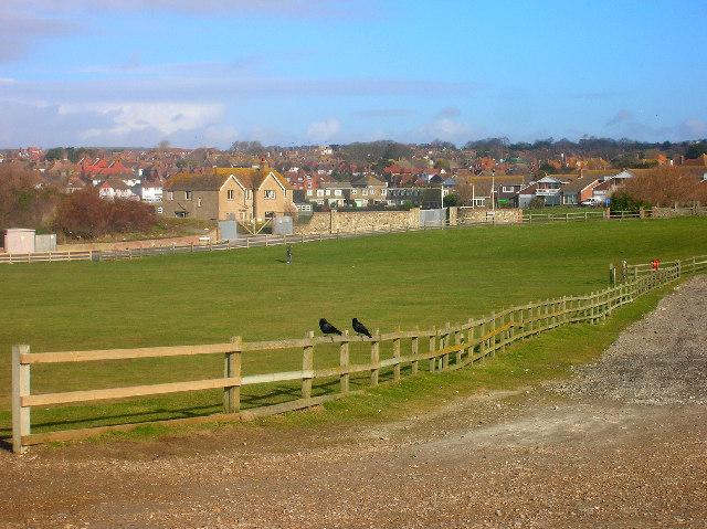Two crows, Beach Green, Seaford