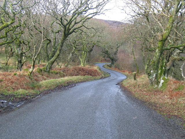 B842 east road, Kintyre.