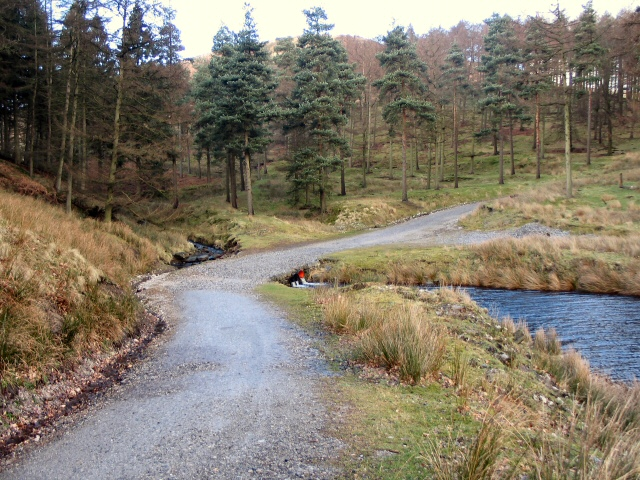 Below Linch Clough