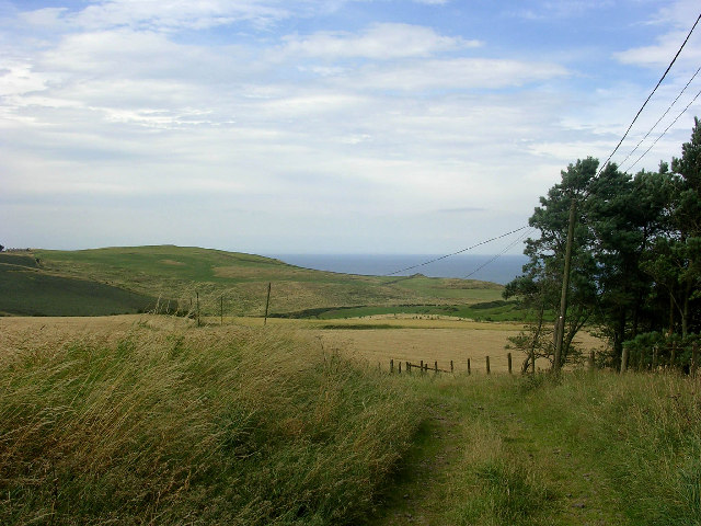 Near Lumsdaine, north of Coldingham