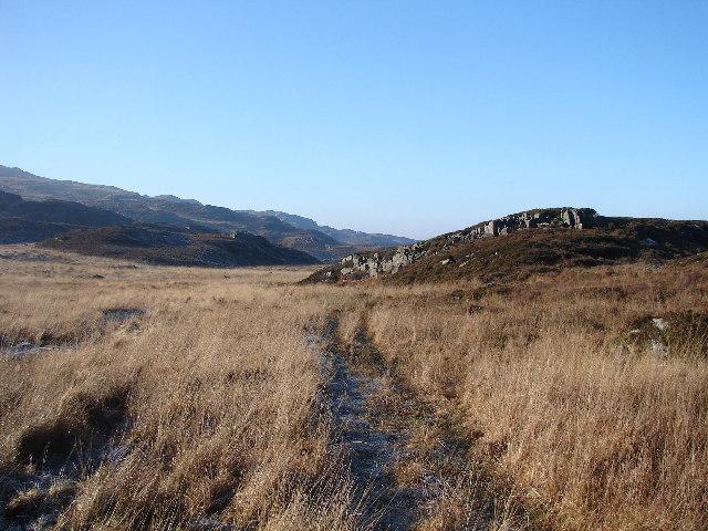 Track near Gloyw Lyn
