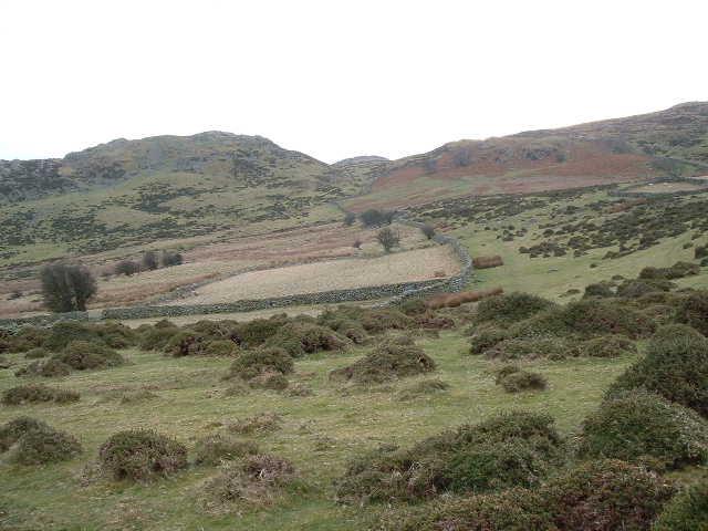 Near Garnedd wen