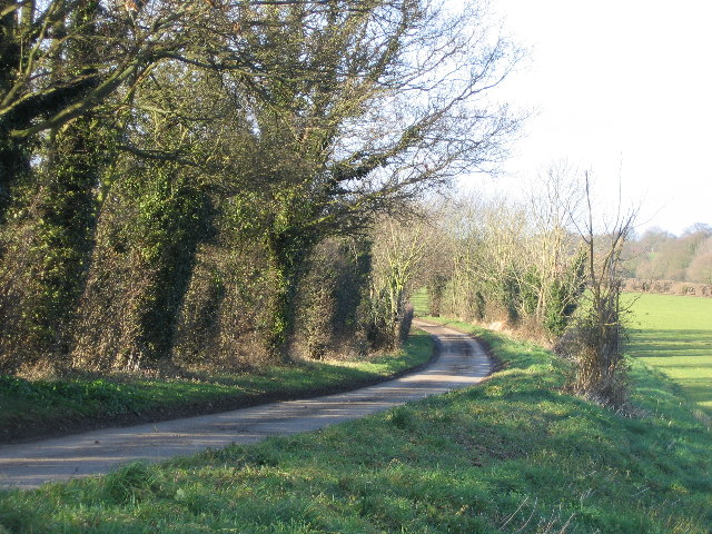 Cross Lane, Surlingham