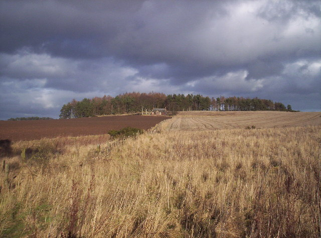 Fields and ruined cottage